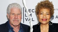 Ron Perlman Files for Divorce From Wife of 38 Years Opal Stone Perlman After Kissing Allison Dunbar