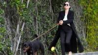 Angelina-Jolie-dog-walking
