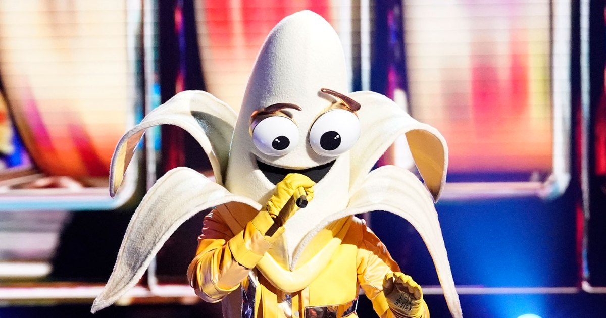 Breaking Down The Masked Singer's New Characters — Plus, Who Was Revealed?