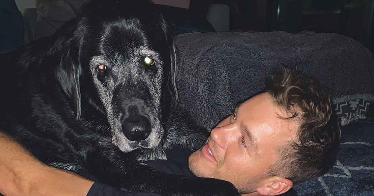 Colton Underwood Mourns His Dog Sniper: 'Miss You Already Buddy'