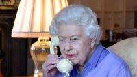 Queen Elizabeth II Lilac