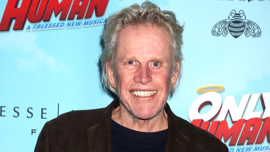 Gary Busey Reveals He Once Died During Brain Surgery and Then Came Back to Life