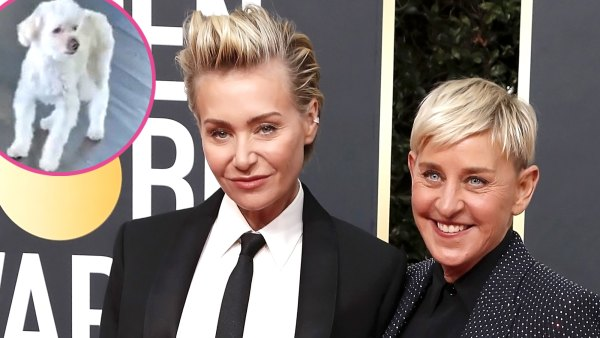 Ellen DeGeneres Portia de Rossi Say Goodbye Beloved Dog Wolf