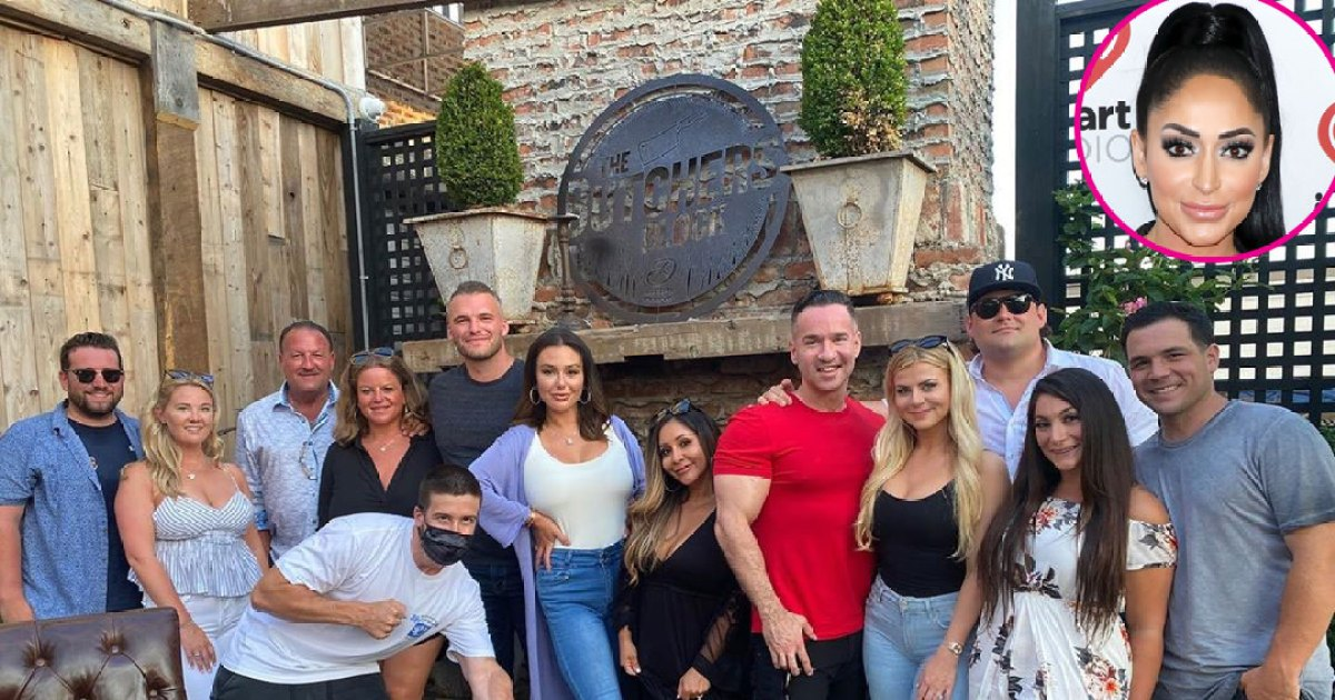 That Speech! 'Jersey Shore' Cast Shades Angelina at Mike's Birthday Party