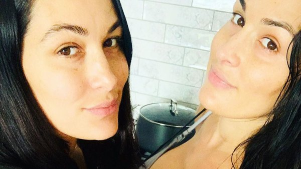 Nikki Bella and Brie Bella Share Selfie 2 Weeks Postpartum After Sons Births