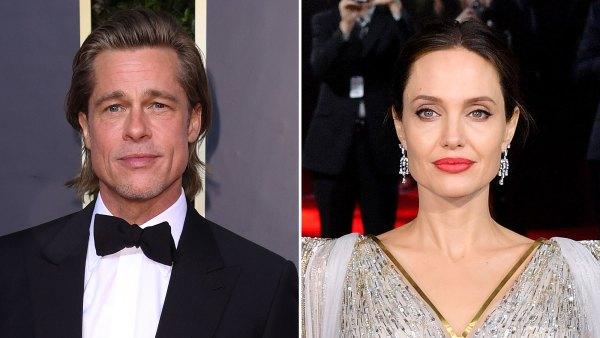 Jillian Armenante Testify in Custody Trial Brad Pitt Angelina Jolie