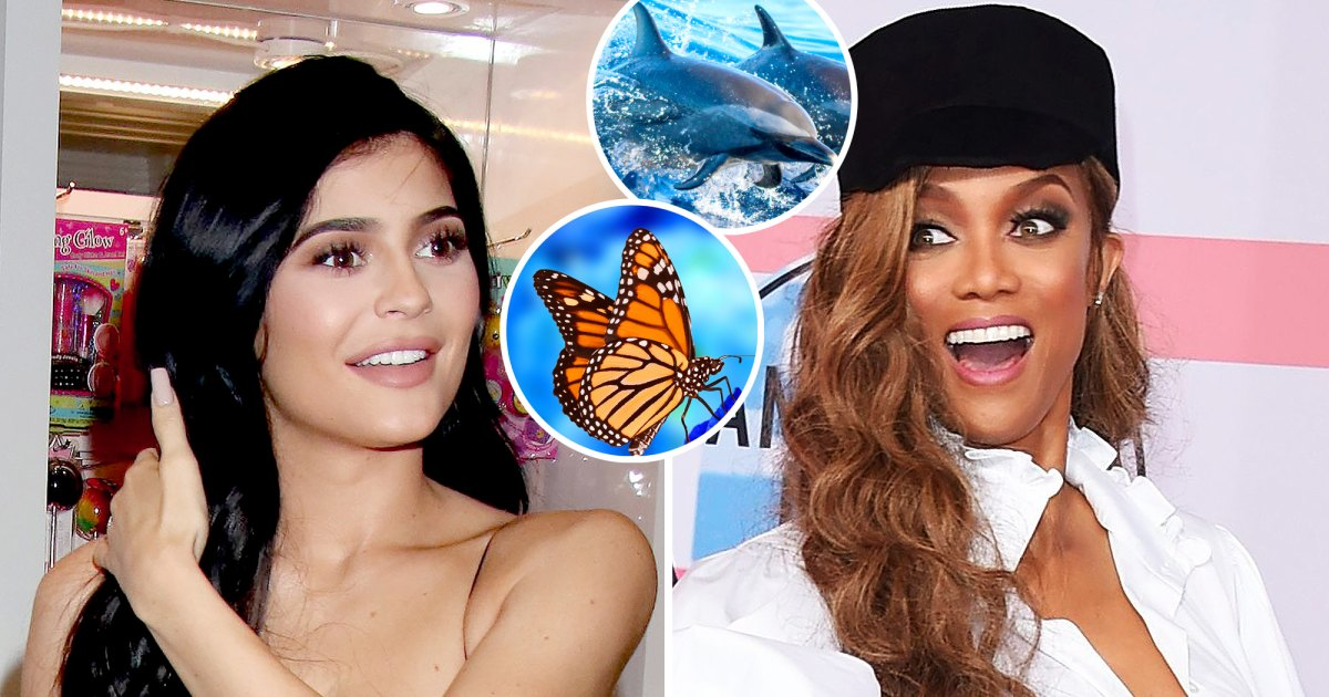 Celebrities' Biggest Phobias: Kylie Jenner, Tyra Banks and More 1