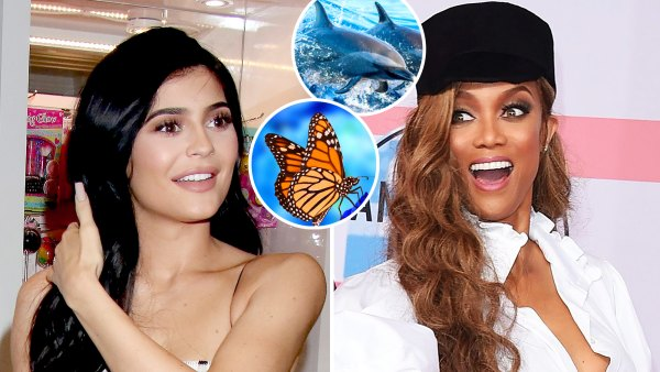 Celebrities Biggest Phobias Kylie Jenner Tyra Banks and More