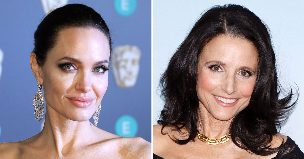 Stars Who've Had Mastectomies: Angelina Jolie, Julia Louis-Dreyfus, More 1