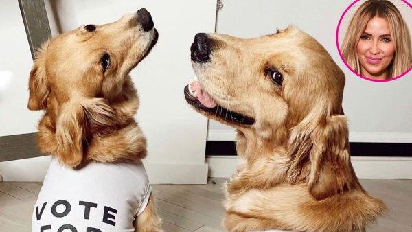 Kaitlyn Bristowe dogs p