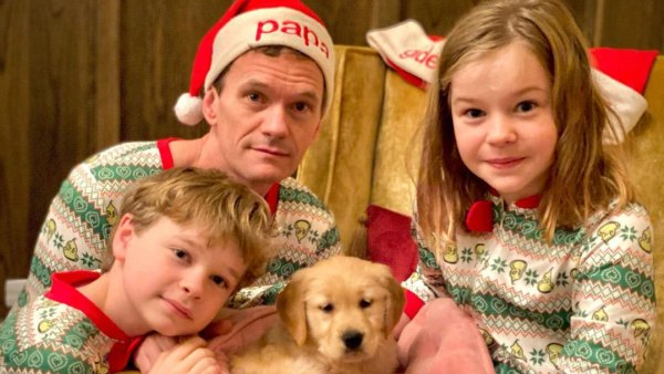 Neil Patrick Harris Harper and Gideon Stars Who Adopted or Fostered Pups Amid Pandemic