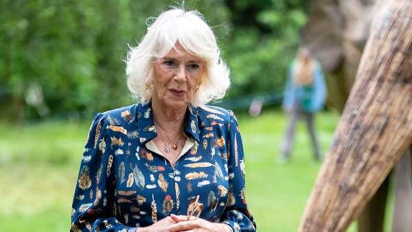 One With Nature! Duchess Camilla Steps Out in Feather-Print Dress