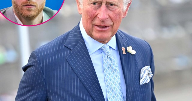 Prince Charles Is 'Immensely Sensitive' and Can't 'Deal' With Prince Harry's Comments, Says Royal Expert.jpg