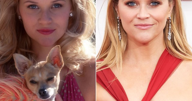 'Legally Blonde' Cast: Where Are They Now?.jpg