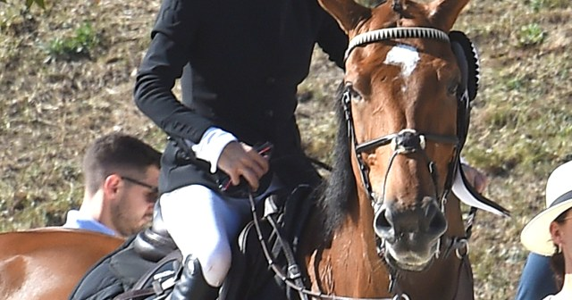Mary-Kate Olsen Wins 3rd Place in Longines Equestrian Tour: See Her Horseback Riding Skills.jpg
