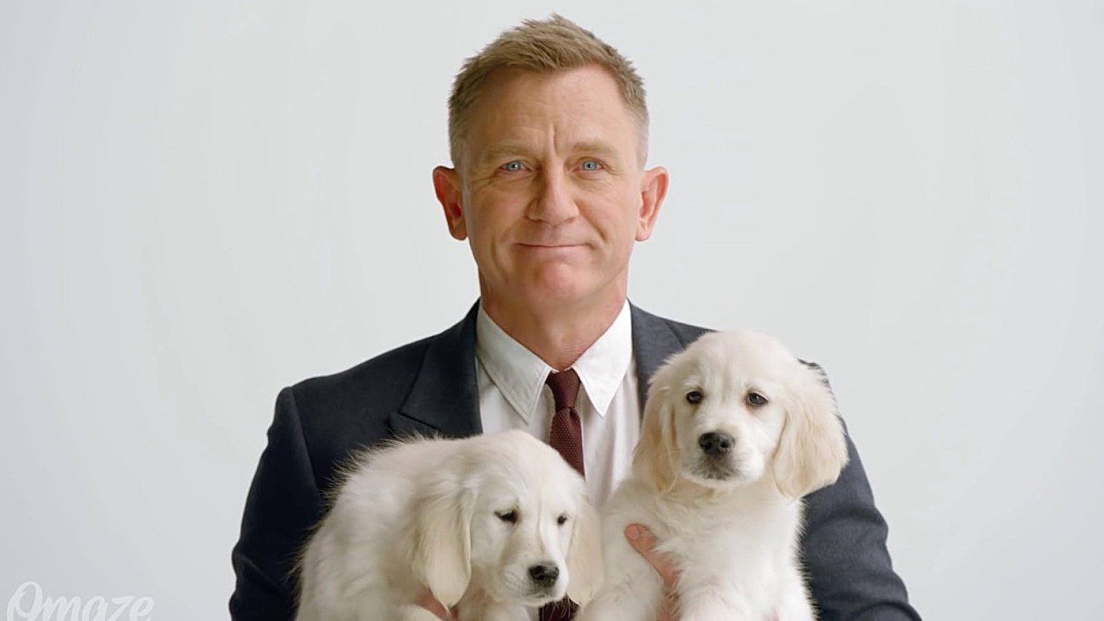 Daniel Craig Plays With Adorable Puppies In New Charity Ad