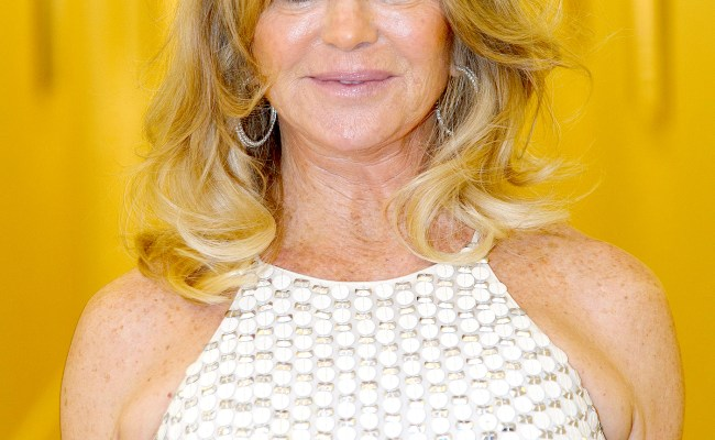Why Goldie Hawn Took A 15 Year Break From Hollywood