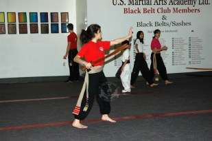 Broadsword Form training in Family Kung Fu Class at US Martial Arts Academy, Ltd in Timonium, Maryland, www.usmaltd.com, 410-561-9882. ©2015 Maricar Jakubowski All rights reserved. No usage allowed in any form without the written consent of the photographer.