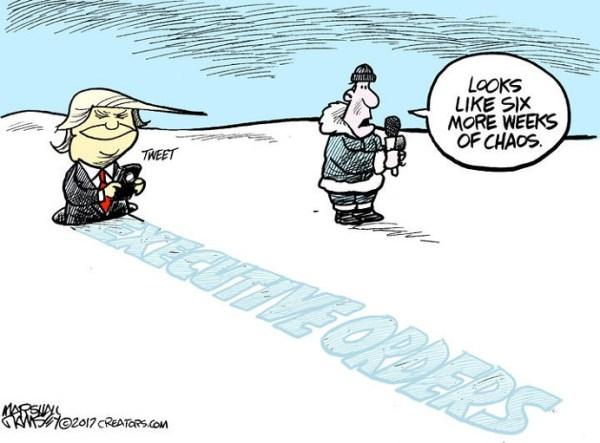 Daily Cartoons February 03 2017 Cartoons US News