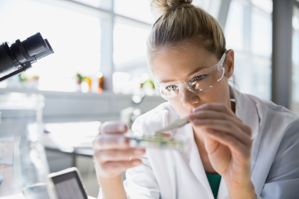 Women Underrepresented In Stem Fields