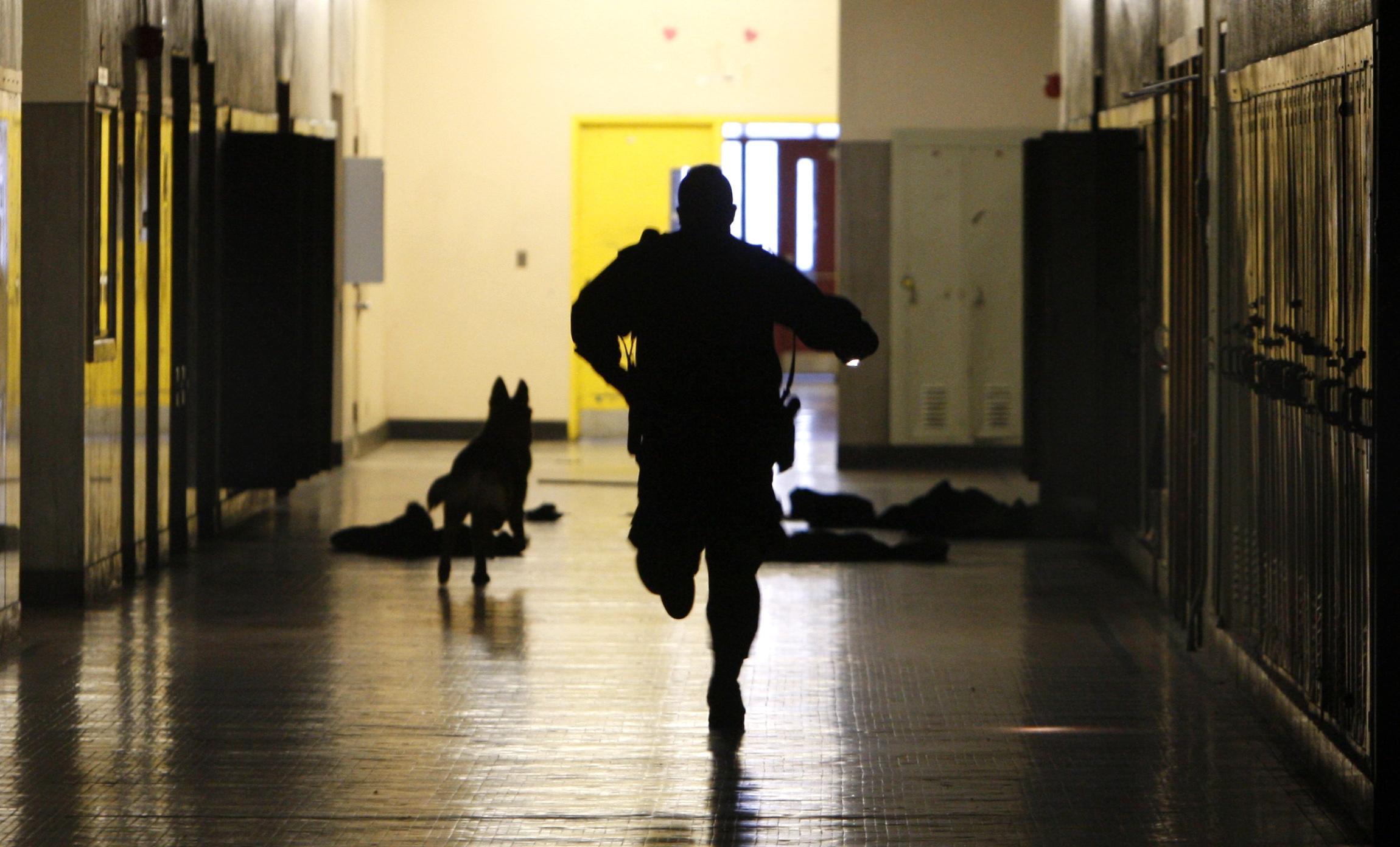School Security Jobs