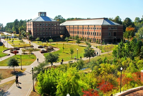 Hasil gambar untuk Georgia Southern University