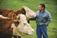Sam Fox raises cattle on 187 rolling acres in Virginia that he started visiting just on Sundays.