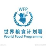 【世界糧食計劃署稱將為加沙北部逾5萬人提供緊急援助】