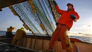 Fishing: New EU rules could have 'grave' impact on UK industry 1