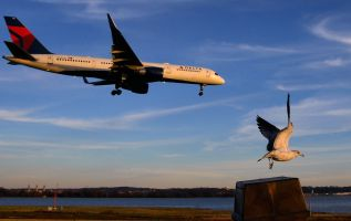 Grounded new planes, routes, safety inspections 3