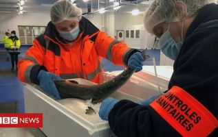 £23m support fund for struggling fishing firms 2