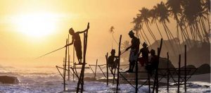A Healthy Indian Ocean Feeds, Protects, and Connects all South Asians 6