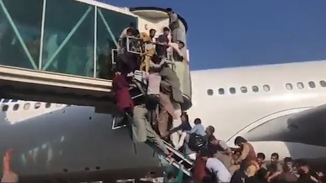 Five dead at Kabul airport as people desperate to leave Afghanistan climb planes 1