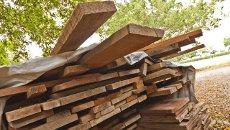 Conhecimento sobre madeira é insuficiente entre engenheiros civis