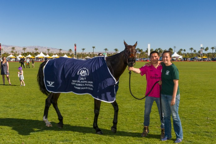 Best Playing Pony was awarded to Jim Wright's Mare, Chimichurri. Photo courtesy of Jim Bremner.