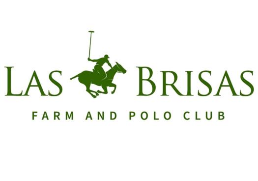 Las Brisas Farm and Polo Club is an active USPA Member Club as of April 2020.