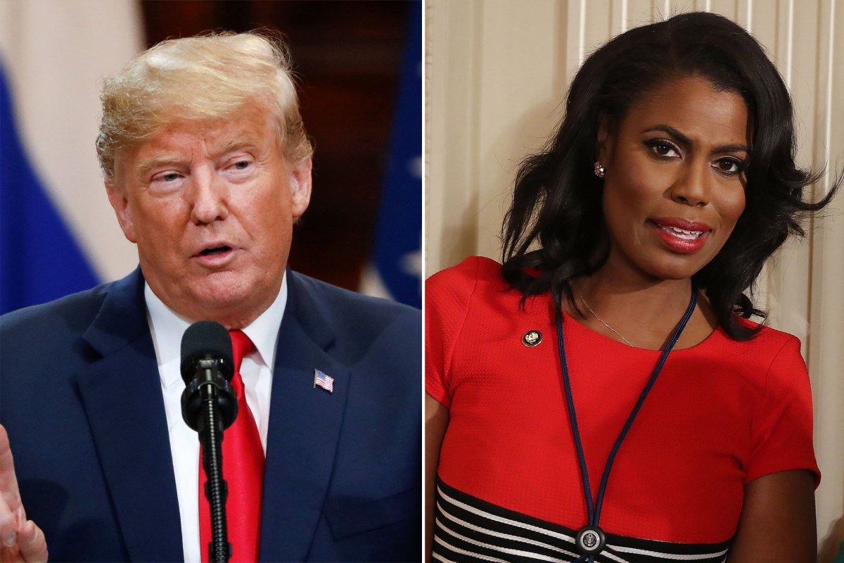 Fine, Let's Talk About this Omarosa Thing