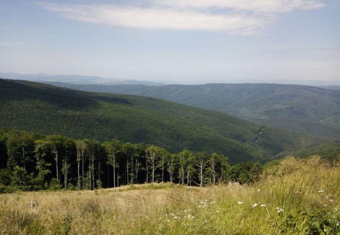 USR solicită anchetă a Corpului de Control al Prim-Ministrului cu privire la incendiile din Parcul Național Semenic