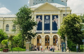 USR cere Ministerului Culturii să nu comaseze muzeele din București