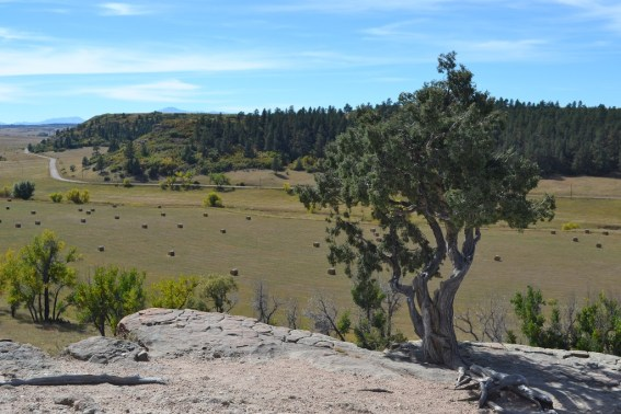A panoramic view to the south, where Pikes Peak can be seen in the distance. (Credit: Sherrie Horn)