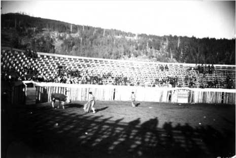 The bullfight in Gillett. (Credit: Denver Public Library Western History Collection)