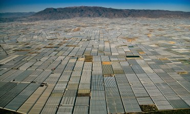 Greenhouses covering the landscape in Spain