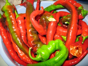 Peppers courtesy of the garden
