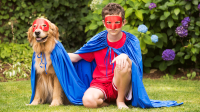 Collection of Matching Dog And Owner Halloween Costumes ...