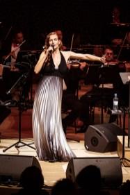 """Elbphilharmonie, Photoprojekt """"Das Erste Jahr"""""""