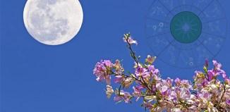 Nedeljni horoskop od 8 -14 Maja 2020