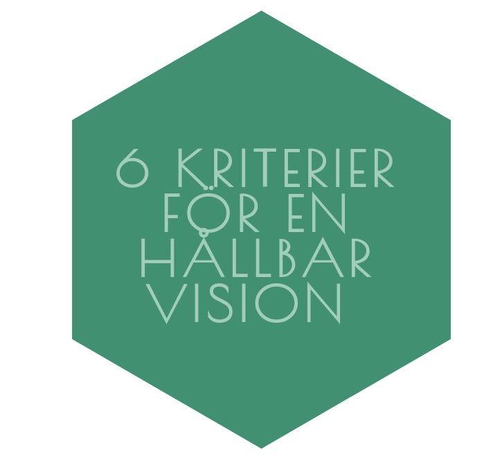 Sex kriterier för en hållbar vision
