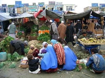 https://i0.wp.com/www.utvet.com/images/afghanistan.jpg