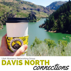 DAVIS NORTH connections