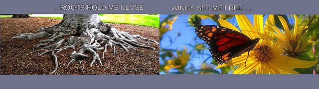 Roots and Wings Photo Collage
